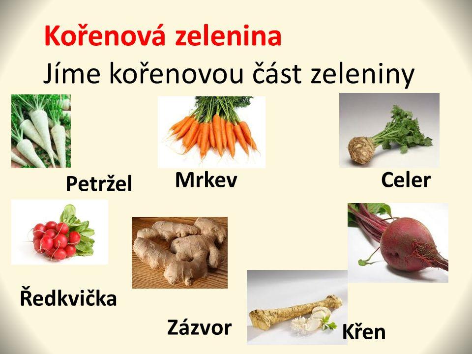 Kořenová zelenina Jíme kořenovou část zeleniny. Petržel MrkevCeler Ředkvička Křen Zázvor