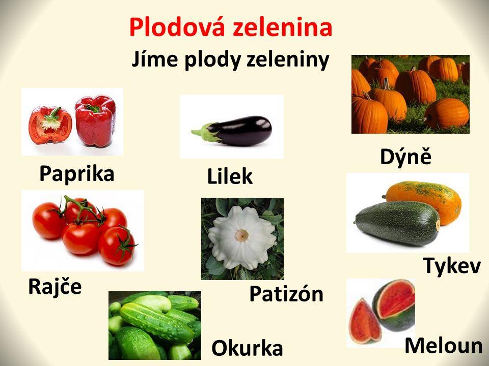 Plodová zelenina Jíme plody zeleniny Paprika Rajče Lilek Patizón Okurka Dýně Tykev Meloun