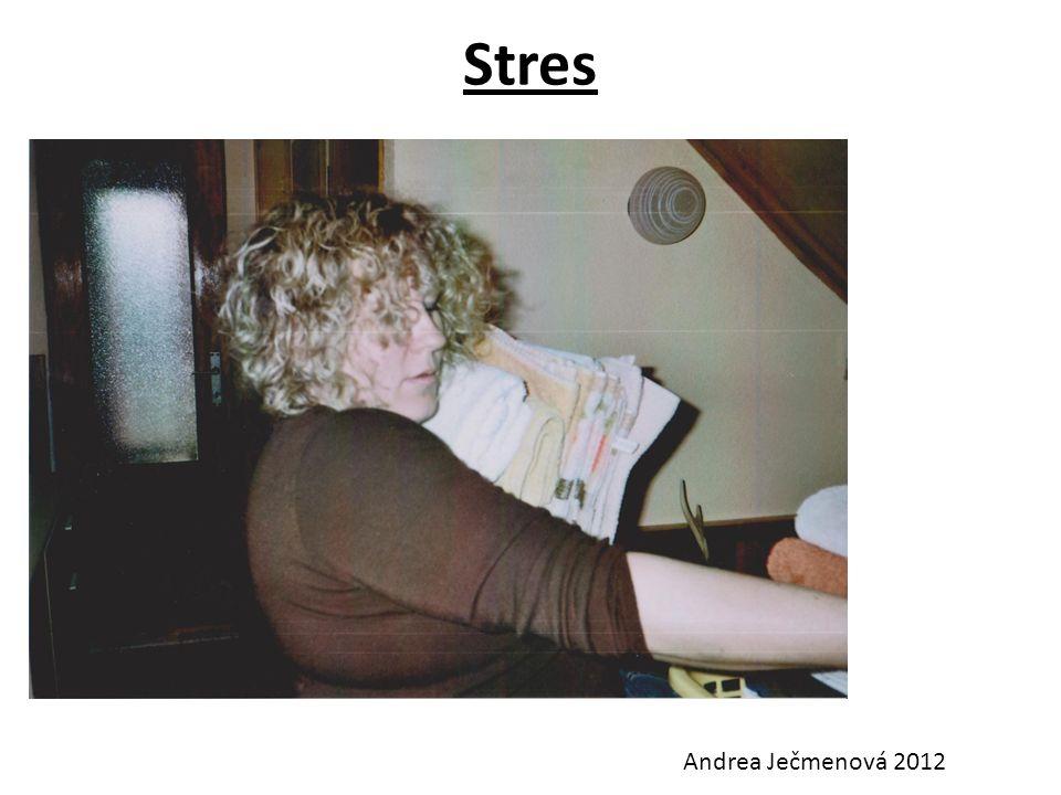 Stres Andrea Ječmenová 2012