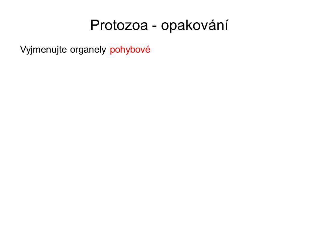 Protozoa - opakování 1.Pojmenujte prvoka na obrázkuZimnička tropická – Plasmodium falciparum 2.Určete jeho výskytčervené krvinky člověka 3.Určete organely pohybuchybí 4.Uveďte způsob(y) rozmnožovánísporogonie, schizogonie, gamogonie 5.Zařaďte jej do správného kmene a třídykmen Výtrusovci (Sporozoa = Apicomplexa), řád Krvinkovky (Haemosporidia) [2][2] [3][3]
