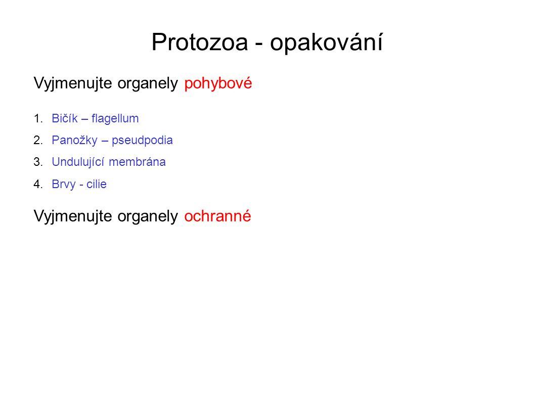 Protozoa - opakování 1.Pojmenujte prvoka na obrázkuLamblie střevní – Giardia intestinalis 2.Určete jeho výskytbuňky tenkého střeva člověka 3.Určete organely pohybubičíky, undulující membrána 4.Uveďte způsob(y) rozmnožovánípodélné dělení 5.Zařaďte jej do správného kmene a třídykmen Praprvoci (Sarcomastigophora) třída Bičíkovci (Flagellata = Mastigophora) [4][4]