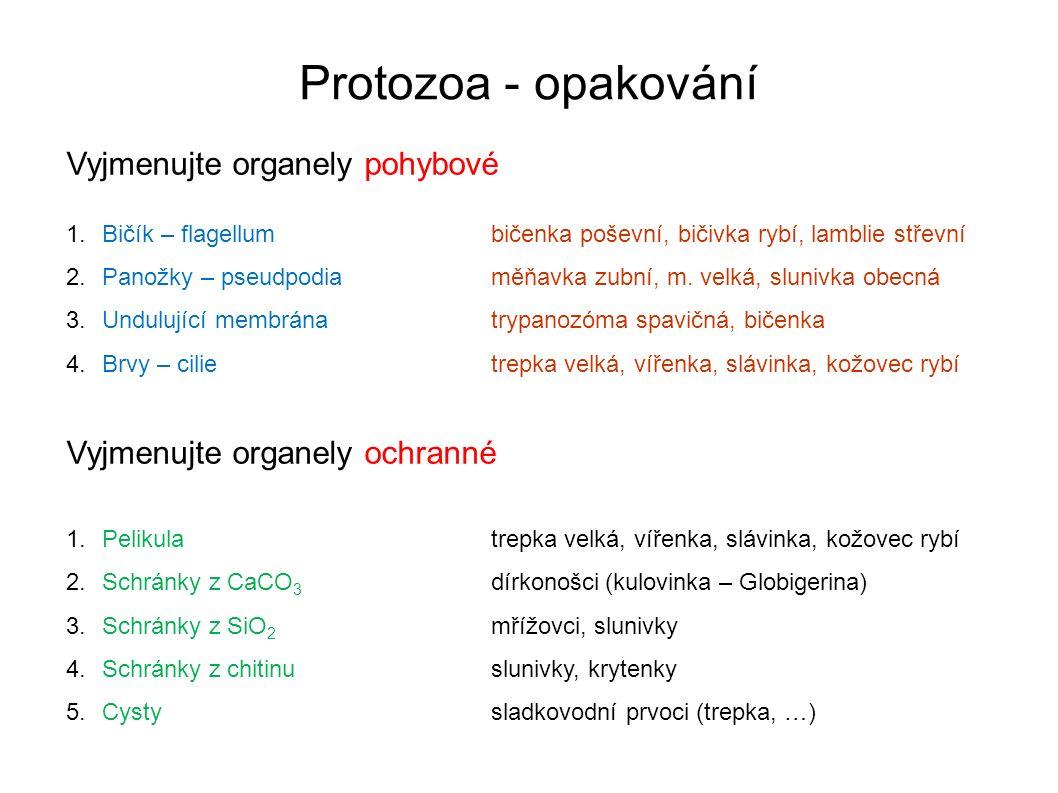 Protozoa - opakování Vyjmenujte organely pohybové 1.Bičík – flagellumbičenka poševní, bičivka rybí, lamblie střevní 2.Panožky – pseudpodiaměňavka zubní, m.