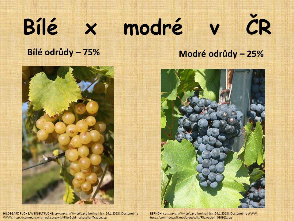 Bílé x modré v ČR Bílé odrůdy – 75% Modré odrůdy – 25% HILDEGARD FUCHS, WEINGUT FUCHS.