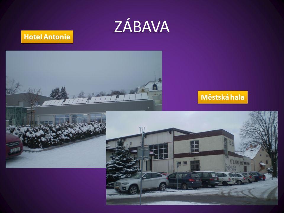 ZÁBAVA Městská hala Hotel Antonie