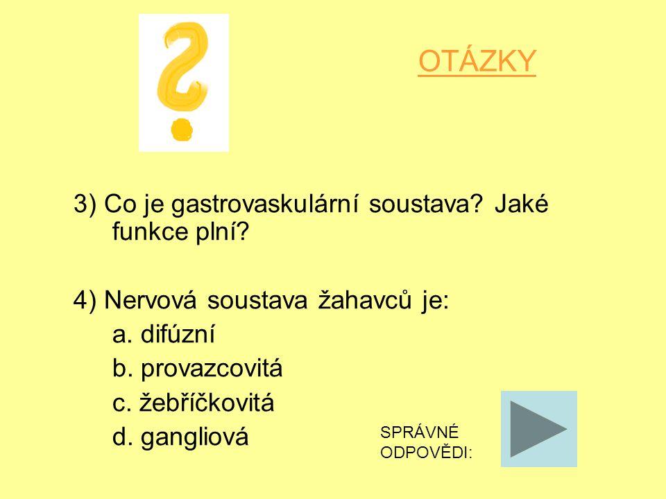 OTÁZKY 3) Co je gastrovaskulární soustava? Jaké funkce plní? 4) Nervová soustava žahavců je: a. difúzní b. provazcovitá c. žebříčkovitá d. gangliová S