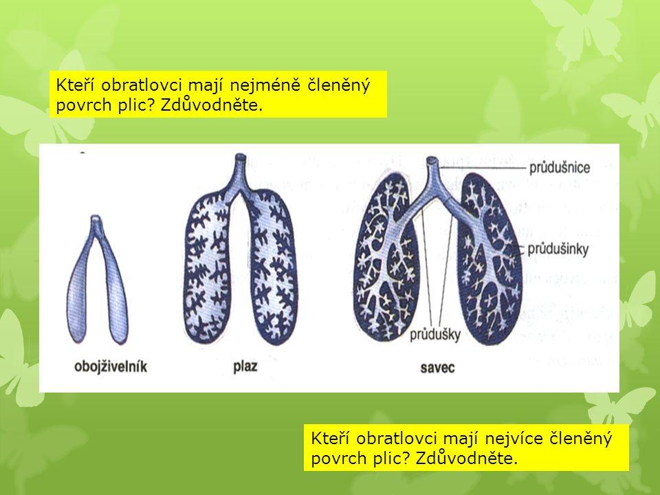 Kteří obratlovci mají nejméně členěný povrch plic? Zdůvodněte. Kteří obratlovci mají nejvíce členěný povrch plic? Zdůvodněte.