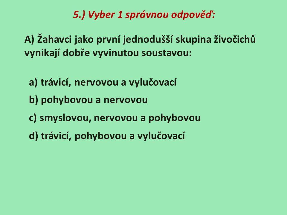 5.) Vyber 1 správnou odpověď: A) Žahavci jako první jednodušší skupina živočichů vynikají dobře vyvinutou soustavou: a) trávicí, nervovou a vylučovací b) pohybovou a nervovou c) smyslovou, nervovou a pohybovou d) trávicí, pohybovou a vylučovací
