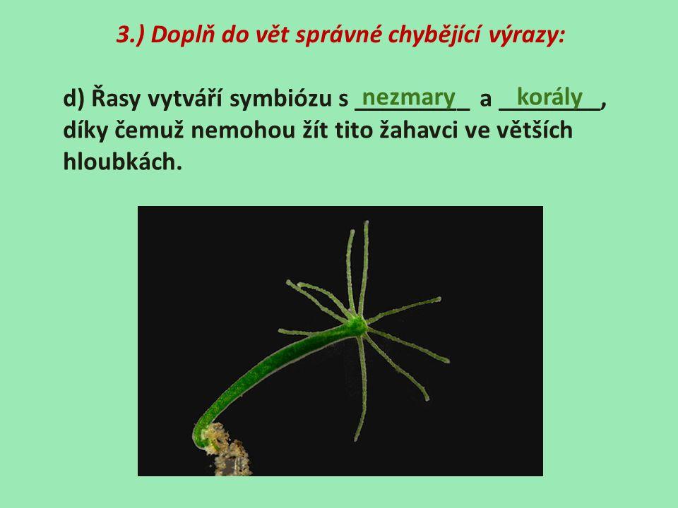3.) Doplň do vět správné chybějící výrazy: d) Řasy vytváří symbiózu s _________ a ________, díky čemuž nemohou žít tito žahavci ve větších hloubkách.