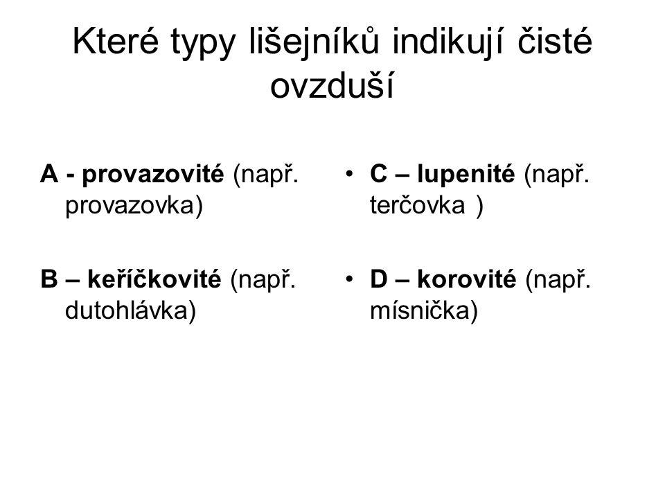 Které typy lišejníků indikují čisté ovzduší A - provazovité (např.