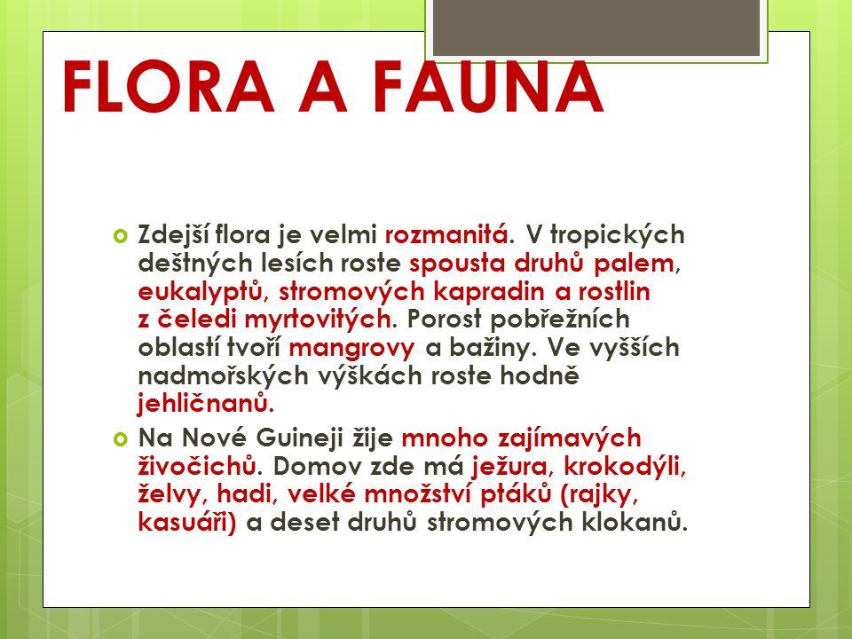 FLORA A FAUNA  Zdejší flora je velmi rozmanitá. V tropických deštných lesích roste spousta druhů palem, eukalyptů, stromových kapradin a rostlin z če