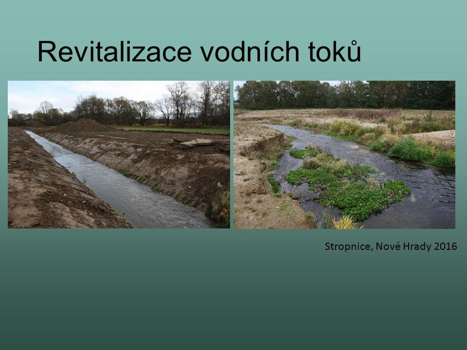 Revitalizace vodních toků Stropnice, Nové Hrady 2016