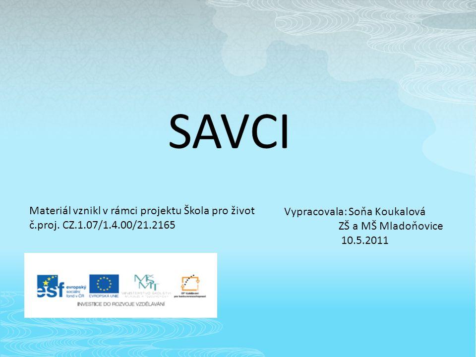 SAVCI Materiál vznikl v rámci projektu Škola pro život č.proj.