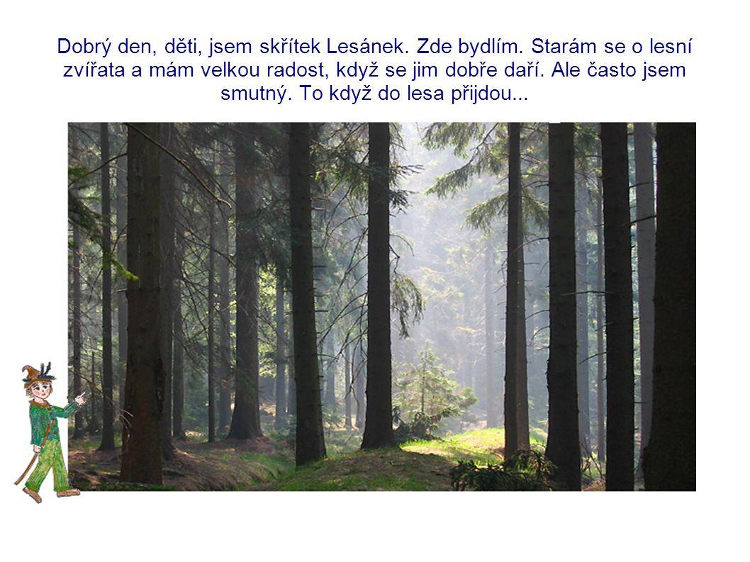 Dobrý den, děti, jsem skřítek Lesánek. Zde bydlím.