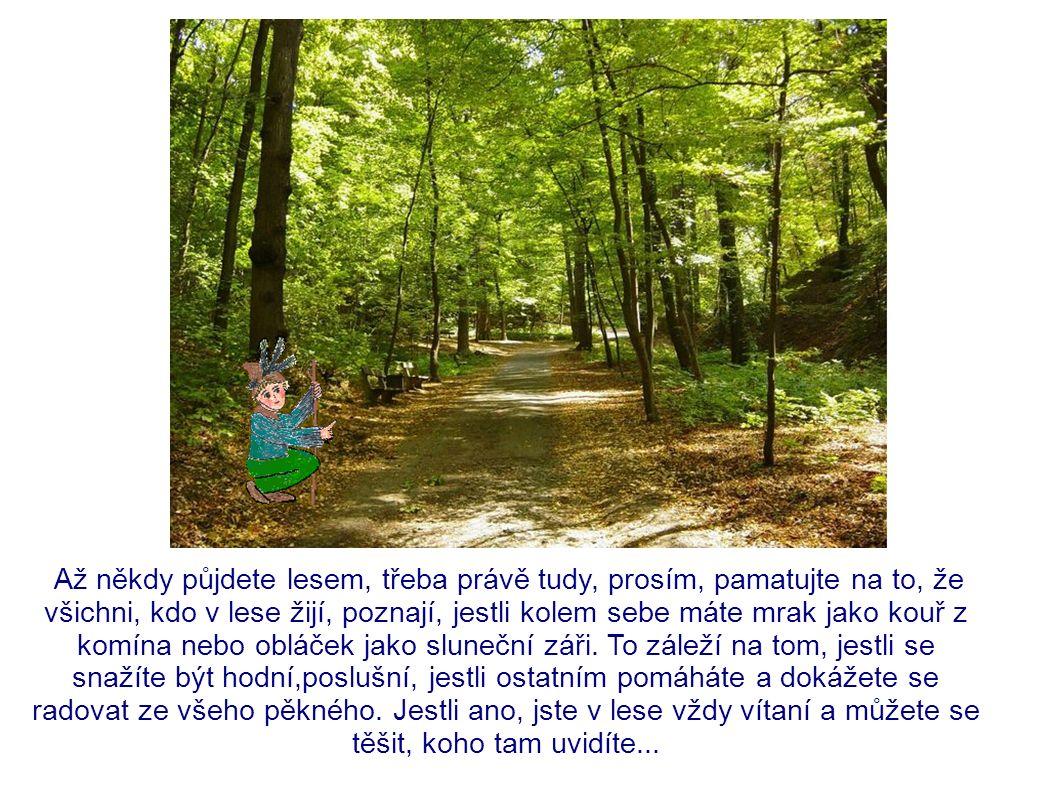 Až někdy půjdete lesem, třeba právě tudy, prosím, pamatujte na to, že všichni, kdo v lese žijí, poznají, jestli kolem sebe máte mrak jako kouř z komína nebo obláček jako sluneční záři.