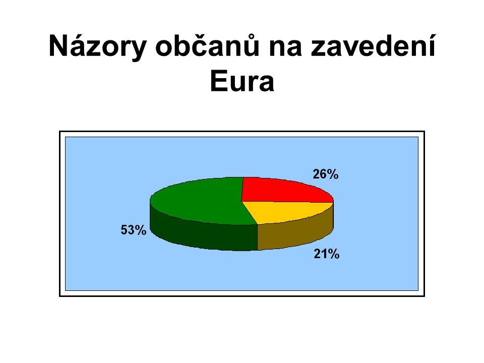 Názory občanů na zavedení Eura