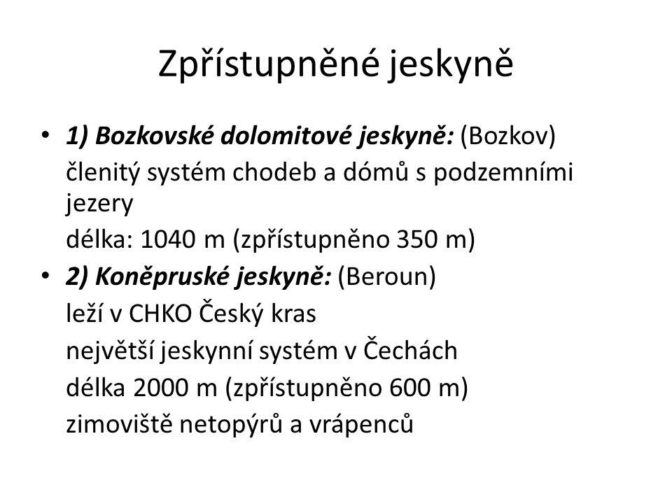 Zpřístupněné jeskyně 1) Bozkovské dolomitové jeskyně: (Bozkov) členitý systém chodeb a dómů s podzemními jezery délka: 1040 m (zpřístupněno 350 m) 2) Koněpruské jeskyně: (Beroun) leží v CHKO Český kras největší jeskynní systém v Čechách délka 2000 m (zpřístupněno 600 m) zimoviště netopýrů a vrápenců
