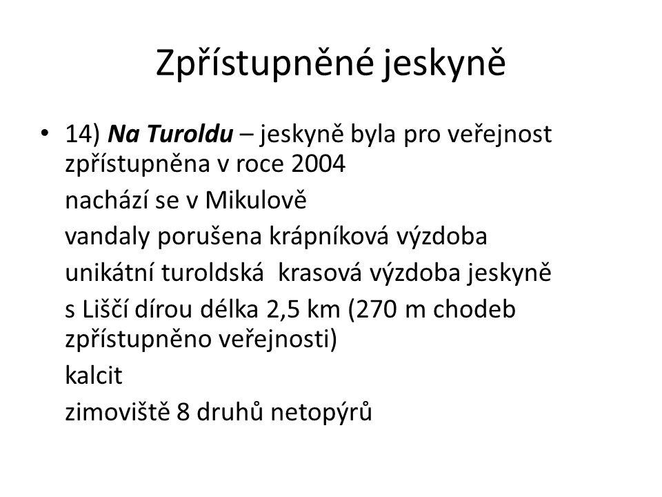 Zpřístupněné jeskyně 14) Na Turoldu – jeskyně byla pro veřejnost zpřístupněna v roce 2004 nachází se v Mikulově vandaly porušena krápníková výzdoba unikátní turoldská krasová výzdoba jeskyně s Liščí dírou délka 2,5 km (270 m chodeb zpřístupněno veřejnosti) kalcit zimoviště 8 druhů netopýrů