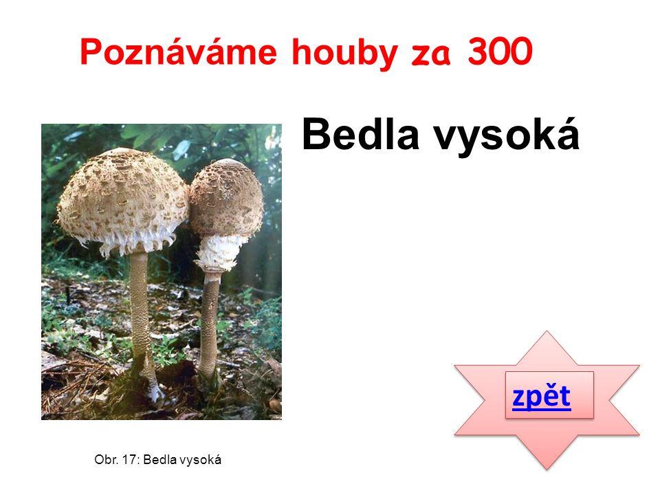 zpět Bedla vysoká Poznáváme houby za 300 Obr. 17: Bedla vysoká