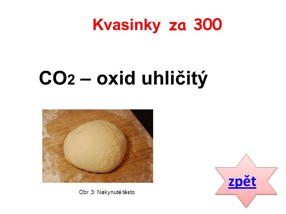 CO 2 – oxid uhličitý zpět Kvasinky za 300 Obr. 3: Nakynuté těsto