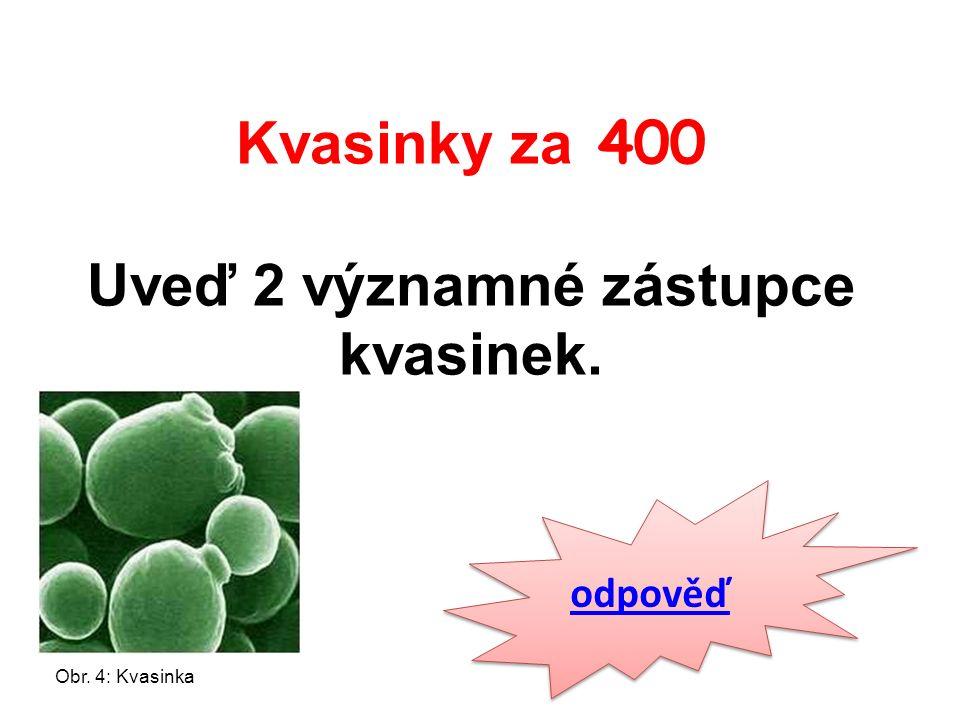 Kvasinky za 400 Uveď 2 významné zástupce kvasinek. odpověď Obr. 4: Kvasinka