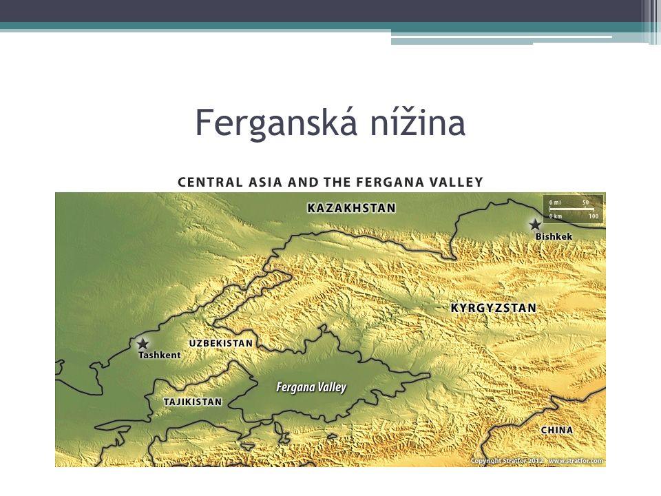 Ferganská nížina