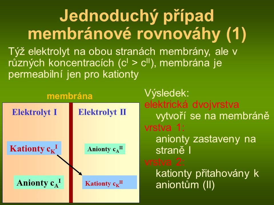 membrána Elektrolyt I Anionty c A II Kationty c K I Jednoduchý případ membránové rovnováhy (1) Elektrolyt II Kationty c K II Anionty c A I Týž elektrolyt na obou stranách membrány, ale v různých koncentracích (c I > c II ), membrána je permeabilní jen pro kationty Výsledek: elektrická dvojvrstva vytvoří se na membráně vrstva 1: anionty zastaveny na straně I vrstva 2: kationty přitahovány k aniontům (II)