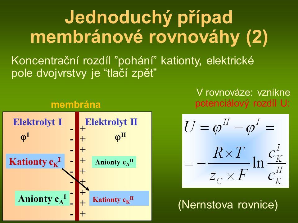 membrána Elektrolyt I Anionty c A II Kationty c K I Jednoduchý případ membránové rovnováhy (2) Elektrolyt II Kationty c K II Anionty c A I Koncentrační rozdíl pohání kationty, elektrické pole dvojvrstvy je tlačí zpět V rovnováze: vznikne potenciálový rozdíl U: II  II ------------------ ++++++++++++++++++ (Nernstova rovnice)