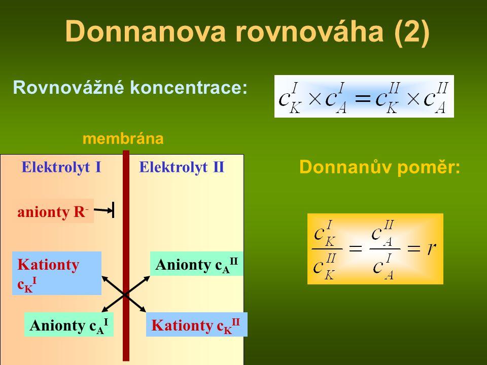 membrána Elektrolyt I anionty R - Anionty c A II Kationty c K I Elektrolyt II Kationty c K II Anionty c A I Donnanova rovnováha (2) Rovnovážné koncentrace: Donnanův poměr: