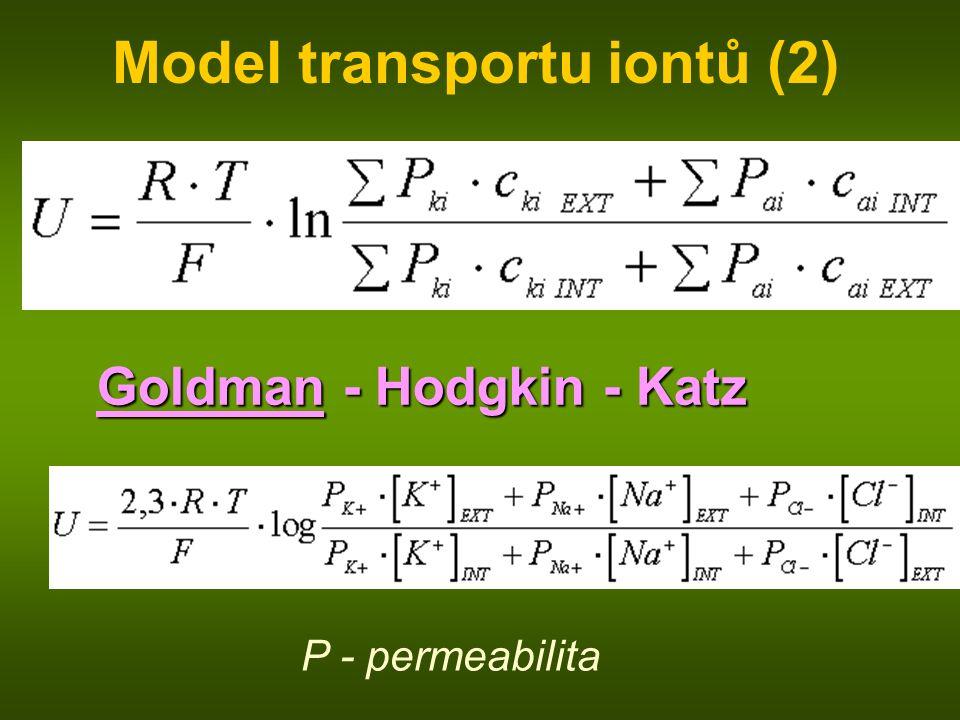 Model transportu iontů (2) Goldman - Hodgkin - Katz P - permeabilita