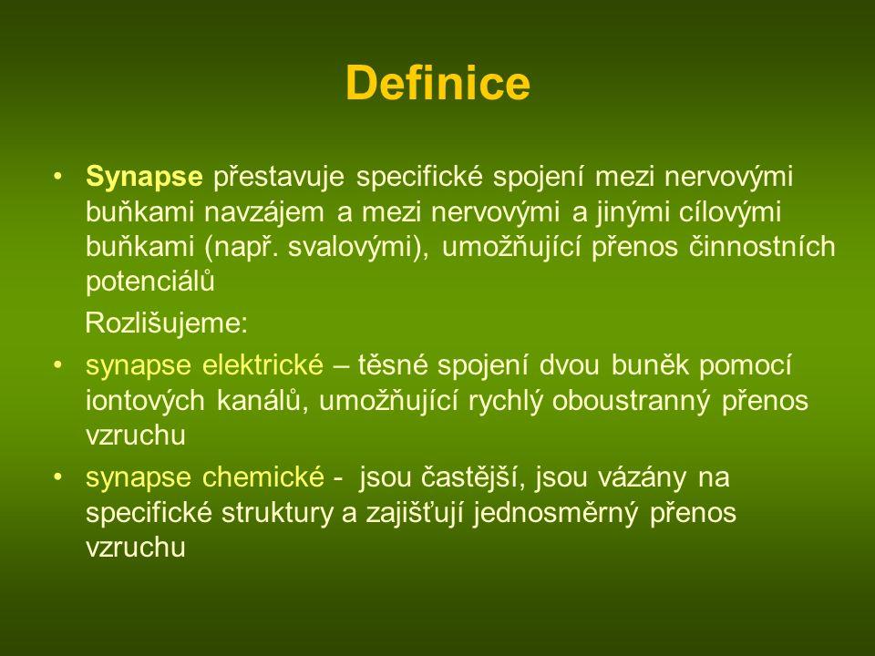 Definice Synapse přestavuje specifické spojení mezi nervovými buňkami navzájem a mezi nervovými a jinými cílovými buňkami (např. svalovými), umožňujíc