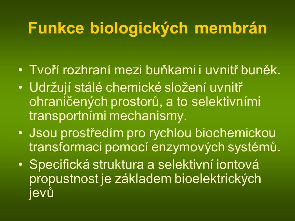 Funkce biologických membrán Tvoří rozhraní mezi buňkami i uvnitř buněk. Udržují stálé chemické složení uvnitř ohraničených prostorů, a to selektivními