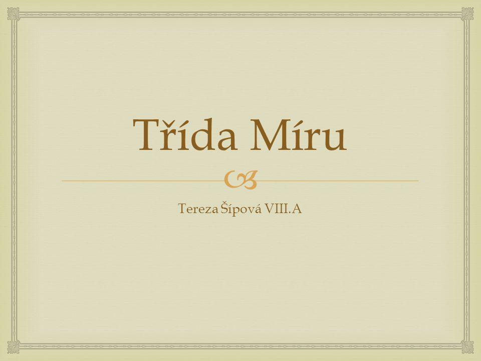  Třída Míru Tereza Šípová VIII.A