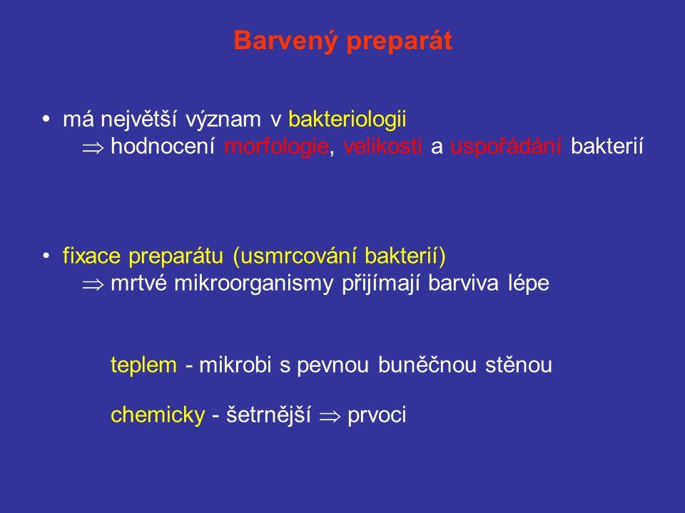 Barvený preparát má největší význam v bakteriologii  hodnocení morfologie, velikosti a uspořádání bakterií fixace preparátu (usmrcování bakterií)  mrtvé mikroorganismy přijímají barviva lépe teplem - mikrobi s pevnou buněčnou stěnou chemicky - šetrnější  prvoci
