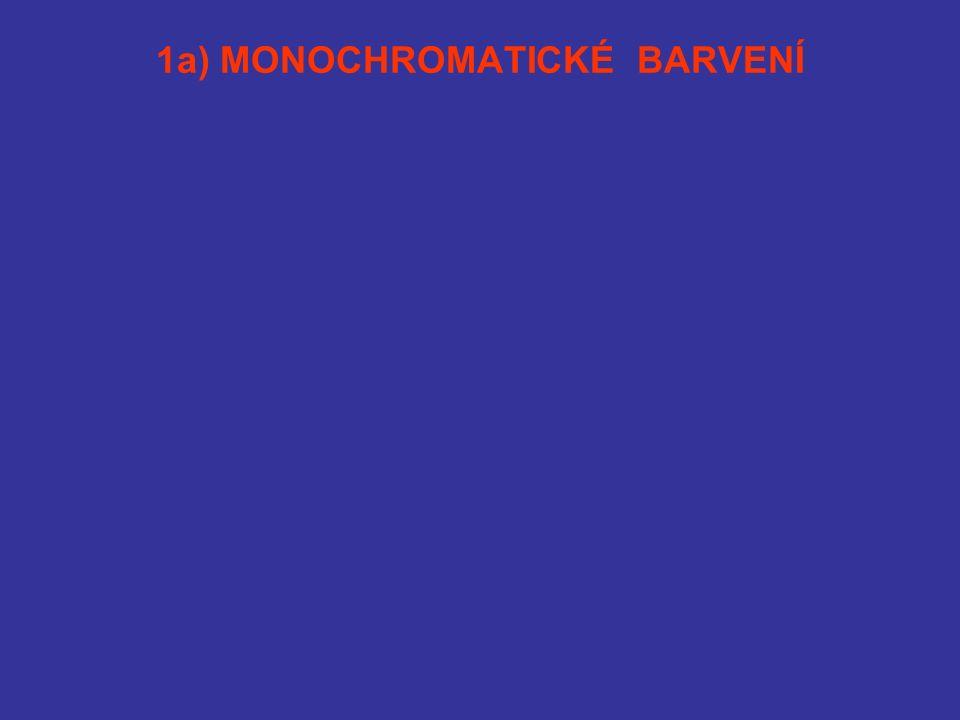 1a) MONOCHROMATICKÉ BARVENÍ