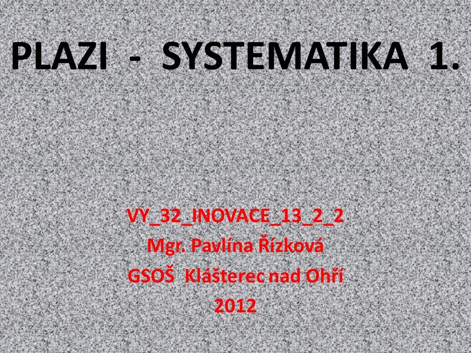 PLAZI - SYSTEMATIKA 1. VY_32_INOVACE_13_2_2 Mgr. Pavlína Řízková GSOŠ Klášterec nad Ohří 2012