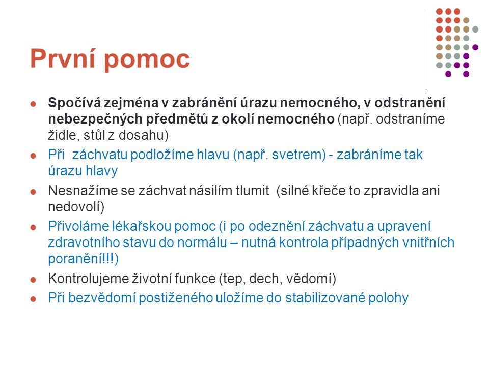 Zdroje Co dělat....Praha: Centrum pro bezpečný stát, 2008, ISBN 987-80-904066-1-2.