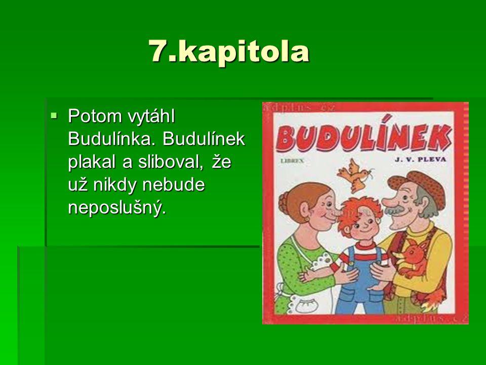 7.kapitola 7.kapitola  Potom vytáhl Budulínka. Budulínek plakal a sliboval, že už nikdy nebude neposlušný.