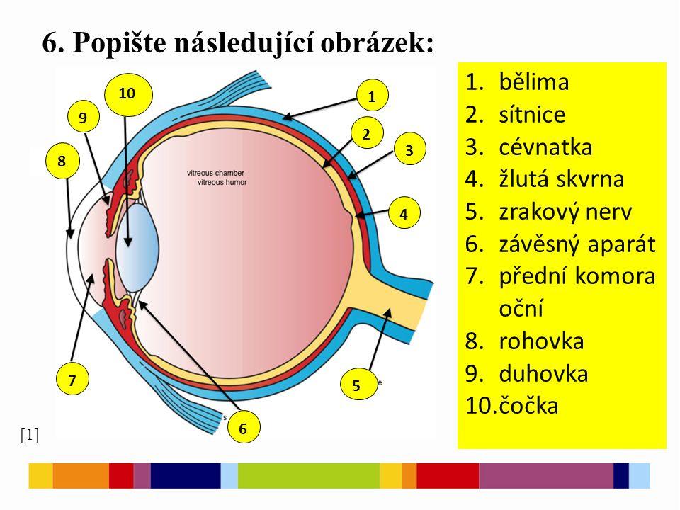 6. Popište následující obrázek: [1] 1 2 3 4 5 9 10 8 7 6 1.bělima 2.sítnice 3.cévnatka 4.žlutá skvrna 5.zrakový nerv 6.závěsný aparát 7.přední komora