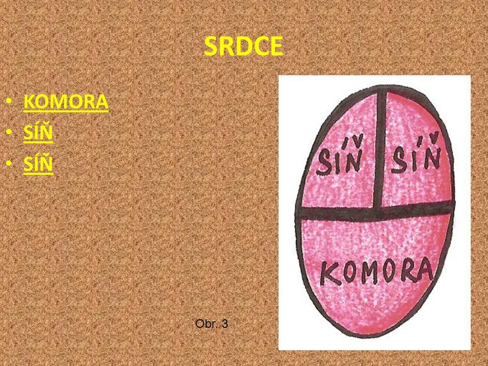 SRDCE KOMORA SÍŇ Obr. 3