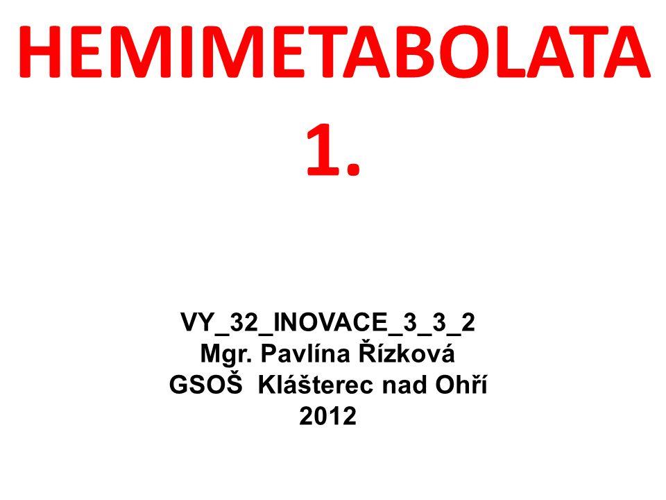 HEMIMETABOLATA 1. VY_32_INOVACE_3_3_2 Mgr. Pavlína Řízková GSOŠ Klášterec nad Ohří 2012
