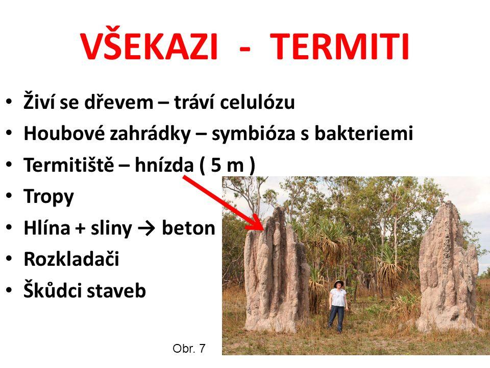 VŠEKAZI - TERMITI Živí se dřevem – tráví celulózu Houbové zahrádky – symbióza s bakteriemi Termitiště – hnízda ( 5 m ) Tropy Hlína + sliny → beton Rozkladači Škůdci staveb Obr.