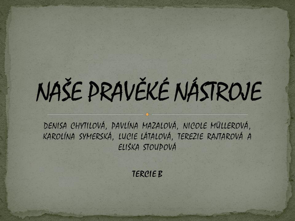 DENISA CHYTILOVÁ, PAVLÍNA MAZALOVÁ, NICOLE MÜLLEROVÁ, KAROLÍNA SYMERSKÁ, LUCIE LÁTALOVÁ, TEREZIE RAJTAROVÁ A ELIŠKA STOUPOVÁ TERCIE B