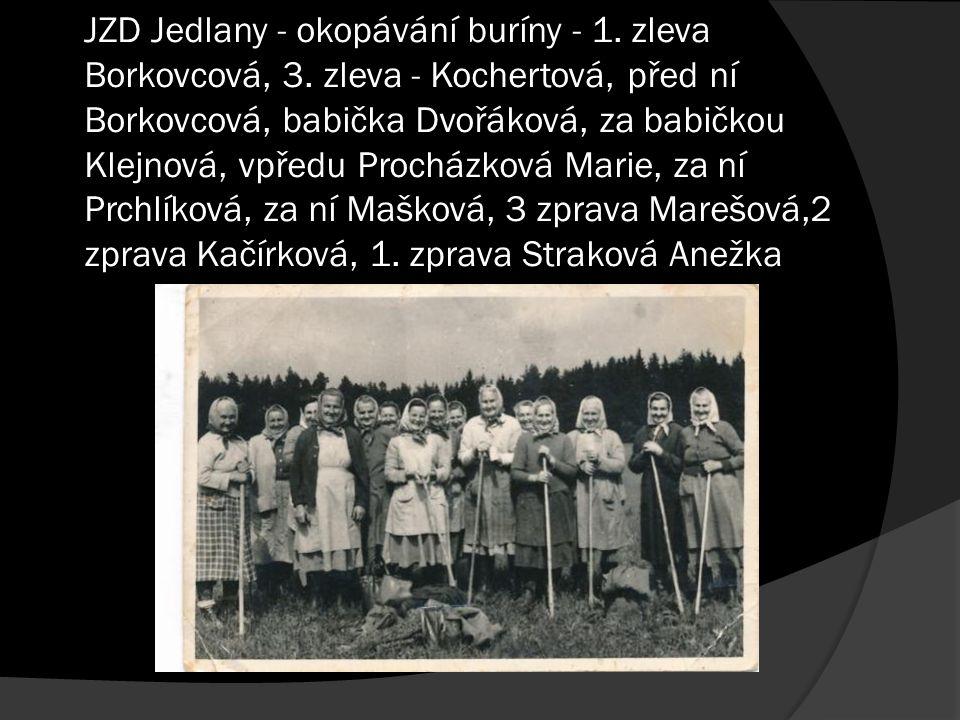 JZD Jedlany - okopávání buríny - 1. zleva Borkovcová, 3. zleva - Kochertová, před ní Borkovcová, babička Dvořáková, za babičkou Klejnová, vpředu Proch
