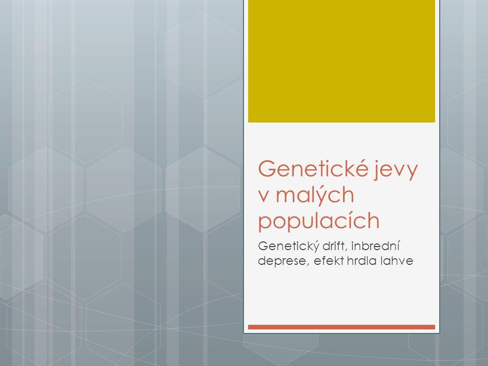 """Genetické jevy v malých populacích  Malý počet jedinců – díky malému počtu jedinců se do """"schránek vejde méně různých alel  Malé populace o svou proměnlivost ještě v průběhu času dál přicházejí"""