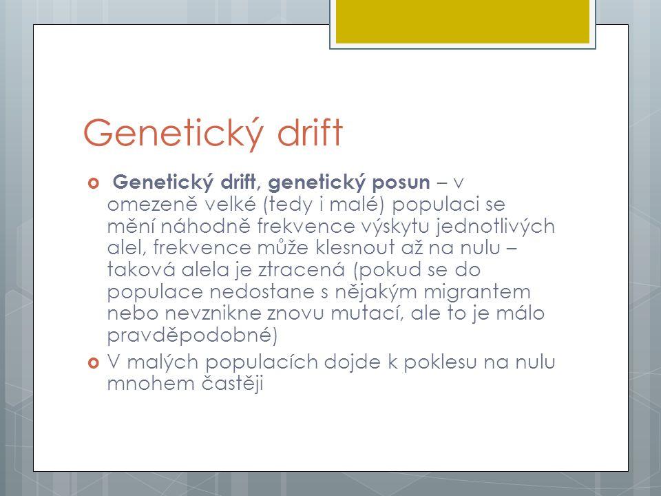Genetický drift  Genetický drift, genetický posun – v omezeně velké (tedy i malé) populaci se mění náhodně frekvence výskytu jednotlivých alel, frekvence může klesnout až na nulu – taková alela je ztracená (pokud se do populace nedostane s nějakým migrantem nebo nevznikne znovu mutací, ale to je málo pravděpodobné)  V malých populacích dojde k poklesu na nulu mnohem častěji