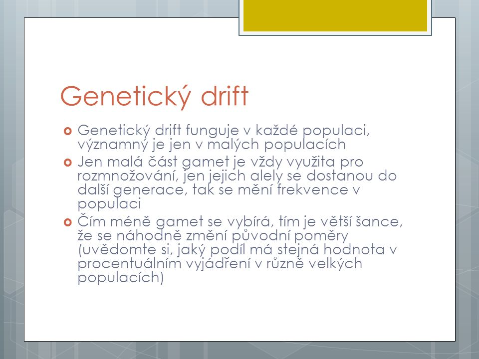 Genetický drift  Genetický drift funguje v každé populaci, významný je jen v malých populacích  Jen malá část gamet je vždy využita pro rozmnožování, jen jejich alely se dostanou do další generace, tak se mění frekvence v populaci  Čím méně gamet se vybírá, tím je větší šance, že se náhodně změní původní poměry (uvědomte si, jaký podíl má stejná hodnota v procentuálním vyjádření v různě velkých populacích)