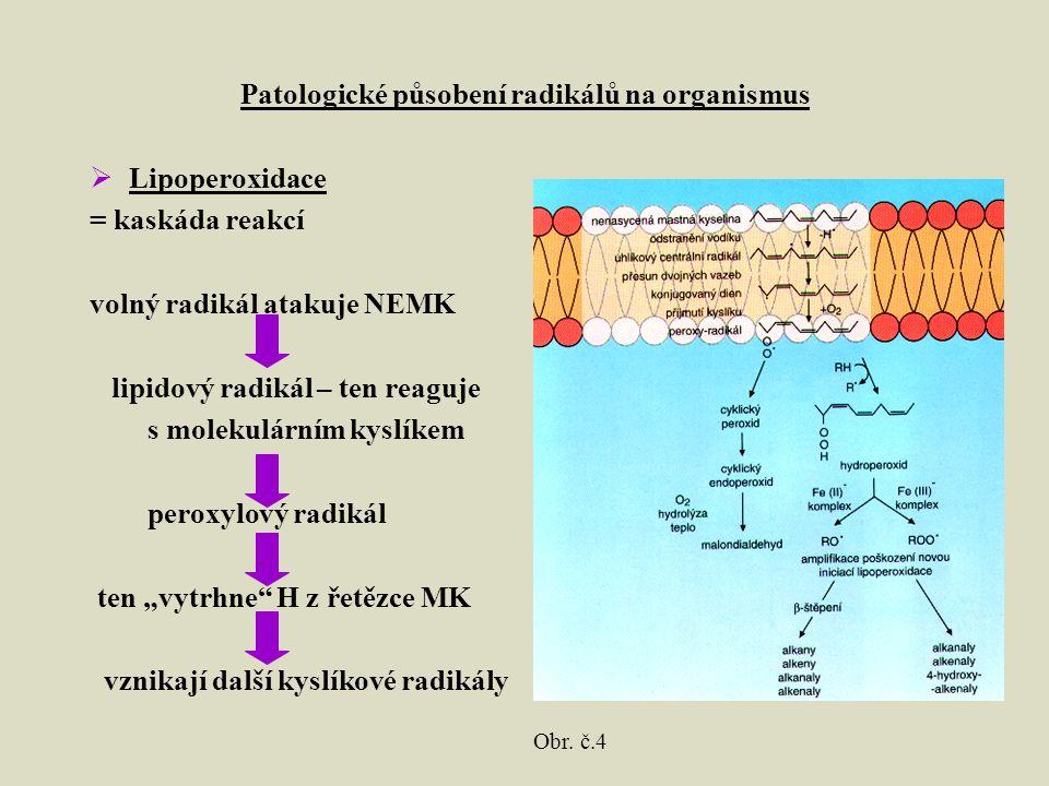 """Patologické působení radikálů na organismus  Lipoperoxidace = kaskáda reakcí volný radikál atakuje NEMK lipidový radikál – ten reaguje s molekulárním kyslíkem peroxylový radikál ten """"vytrhne H z řetězce MK vznikají další kyslíkové radikály Obr."""