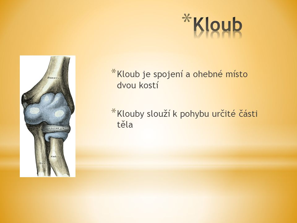 * Kloub je spojení a ohebné místo dvou kostí * Klouby slouží k pohybu určité části těla