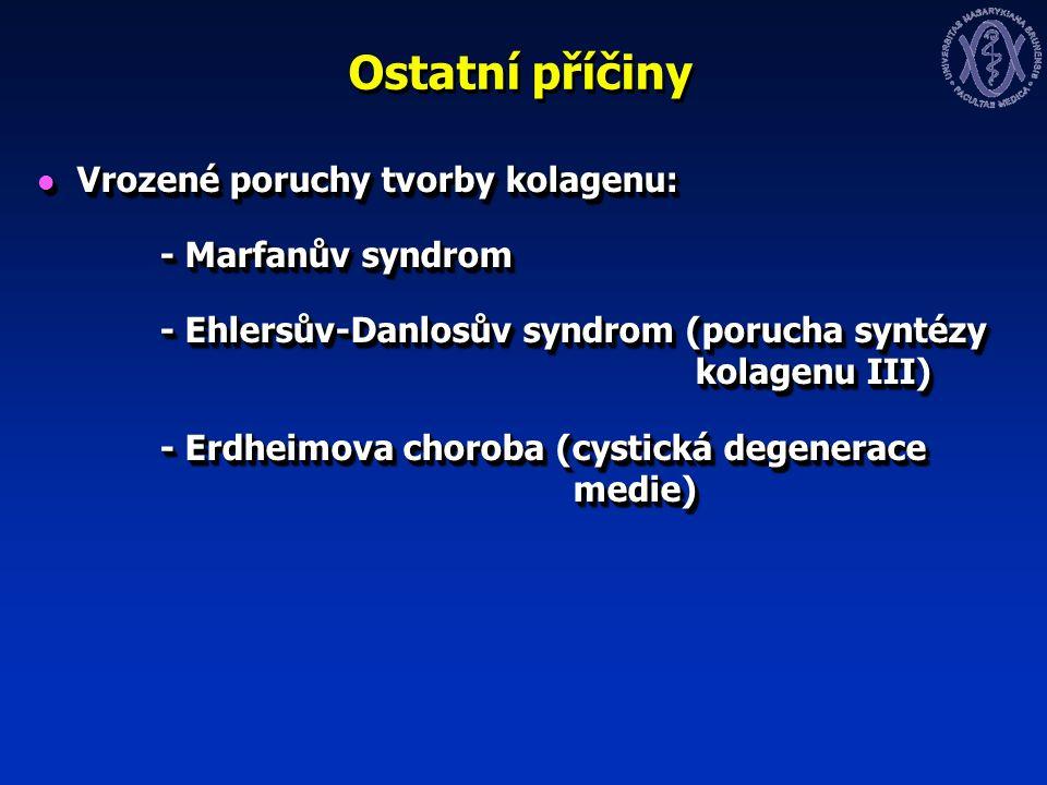 Ostatní příčiny Vrozené poruchy tvorby kolagenu: Vrozené poruchy tvorby kolagenu: - Marfanův syndrom - Marfanův syndrom - Ehlersův-Danlosův syndrom (porucha syntézy kolagenu III) - Ehlersův-Danlosův syndrom (porucha syntézy kolagenu III) - Erdheimova choroba (cystická degenerace medie) - Erdheimova choroba (cystická degenerace medie) Vrozené poruchy tvorby kolagenu: Vrozené poruchy tvorby kolagenu: - Marfanův syndrom - Marfanův syndrom - Ehlersův-Danlosův syndrom (porucha syntézy kolagenu III) - Ehlersův-Danlosův syndrom (porucha syntézy kolagenu III) - Erdheimova choroba (cystická degenerace medie) - Erdheimova choroba (cystická degenerace medie)