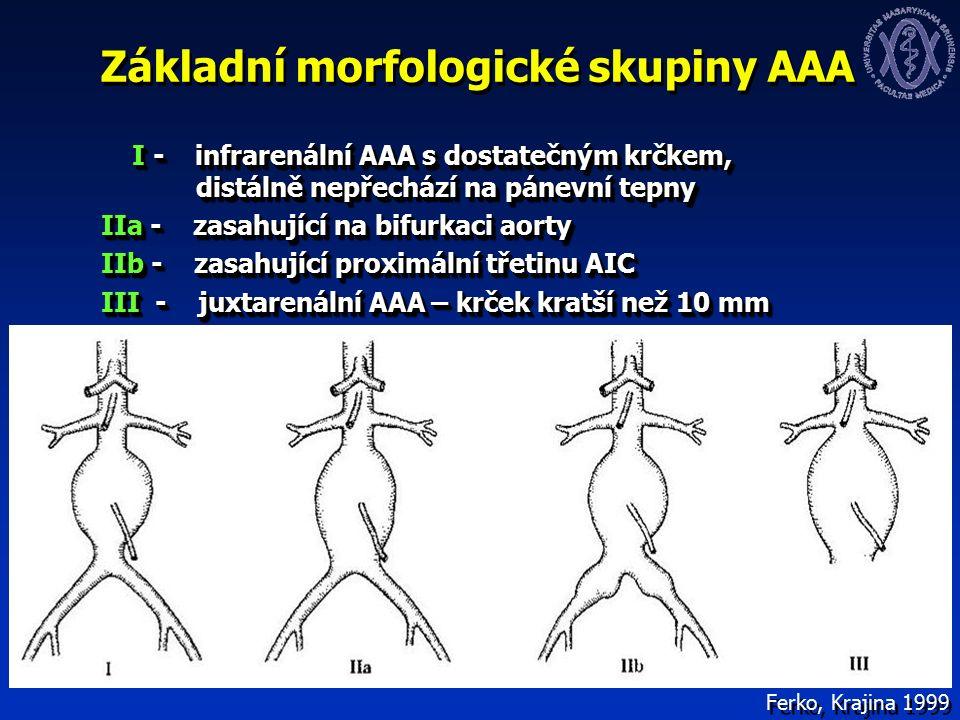 Základní morfologické skupiny AAA I - infrarenální AAA s dostatečným krčkem, distálně nepřechází na pánevní tepny I - infrarenální AAA s dostatečným krčkem, distálně nepřechází na pánevní tepny IIa - zasahující na bifurkaci aorty IIa - zasahující na bifurkaci aorty IIb - zasahující proximální třetinu AIC IIb - zasahující proximální třetinu AIC III - juxtarenální AAA – krček kratší než 10 mm III - juxtarenální AAA – krček kratší než 10 mm I - infrarenální AAA s dostatečným krčkem, distálně nepřechází na pánevní tepny I - infrarenální AAA s dostatečným krčkem, distálně nepřechází na pánevní tepny IIa - zasahující na bifurkaci aorty IIa - zasahující na bifurkaci aorty IIb - zasahující proximální třetinu AIC IIb - zasahující proximální třetinu AIC III - juxtarenální AAA – krček kratší než 10 mm III - juxtarenální AAA – krček kratší než 10 mm Ferko, Krajina 1999